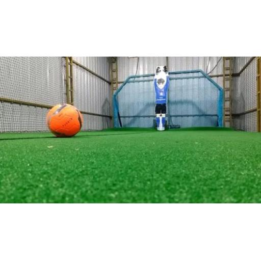 iRoboGoalie - Mansfield Sports Group