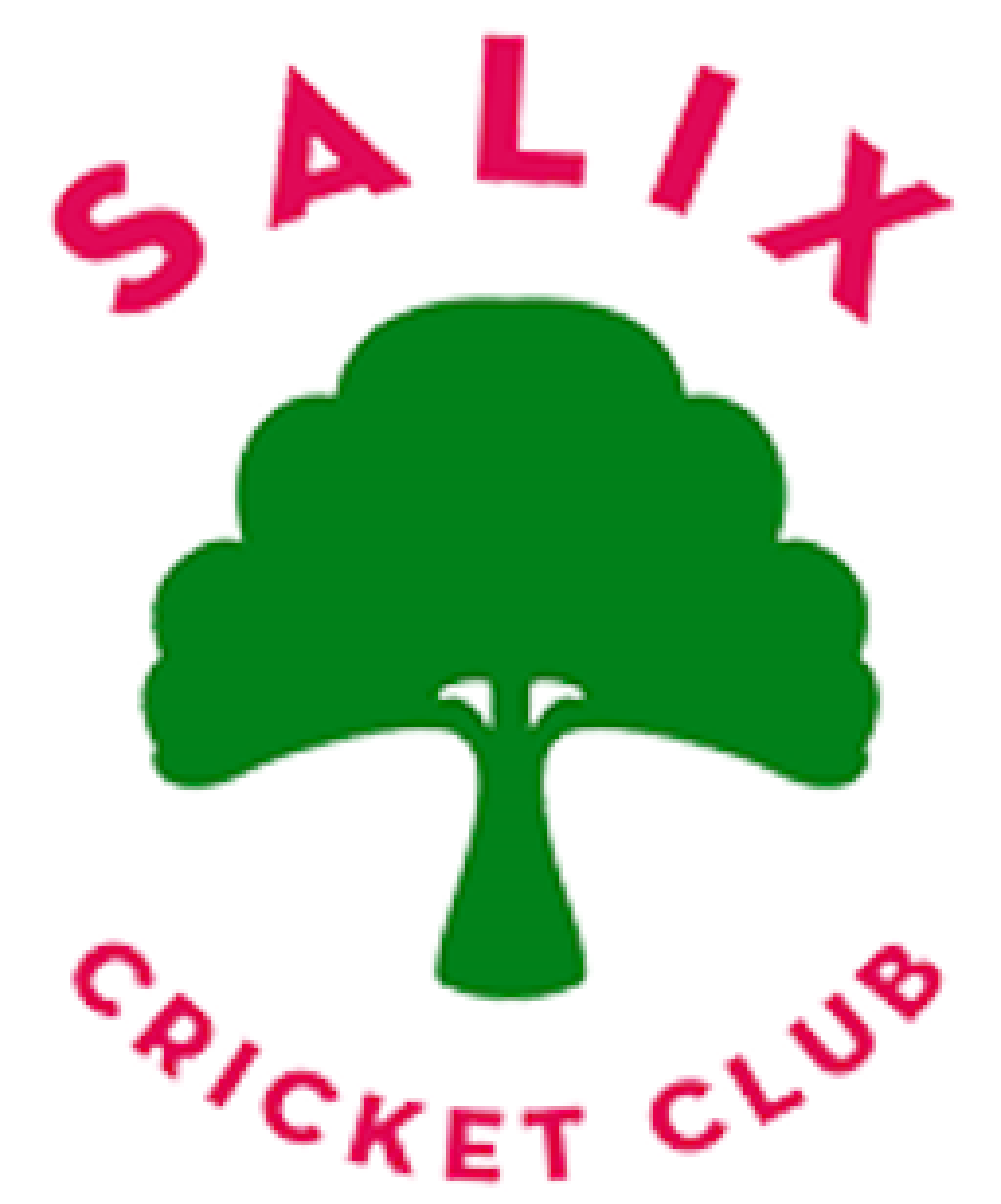 Salix_CC_Logo_150x150_crop_center@2x.png