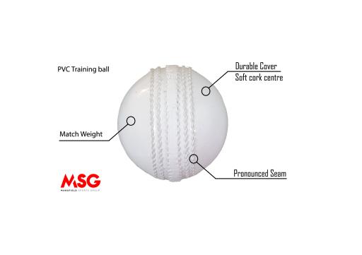 PVC training ball.png