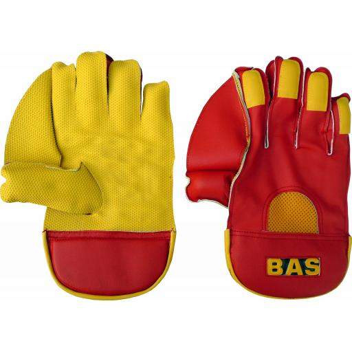 Classic Wicket Keeping Gloves