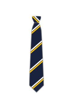 Year 7-11 Boys - Tie.jpg